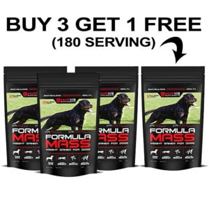 MVP K9 Performance and Muscle Builder Supplement