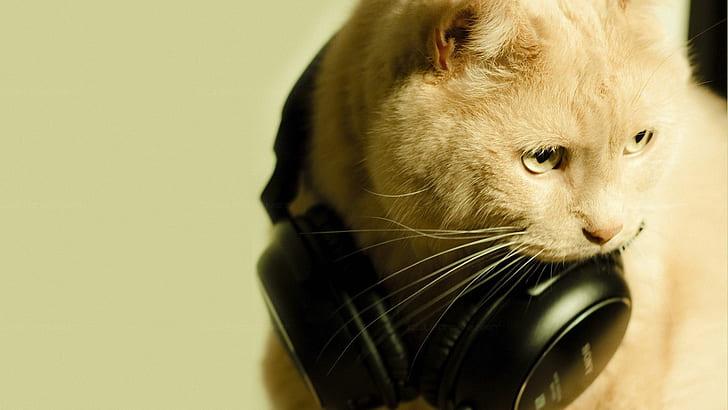 Best Cat Proof Headphones Reviews